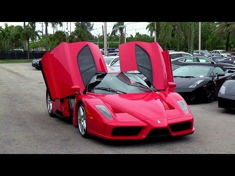 Ferrari Enzo in Prestige imports Miami START UP + REVS!!
